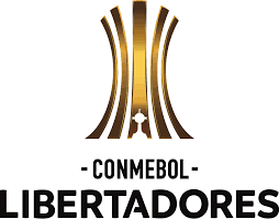 Copa Libertadores 2020. Qualification